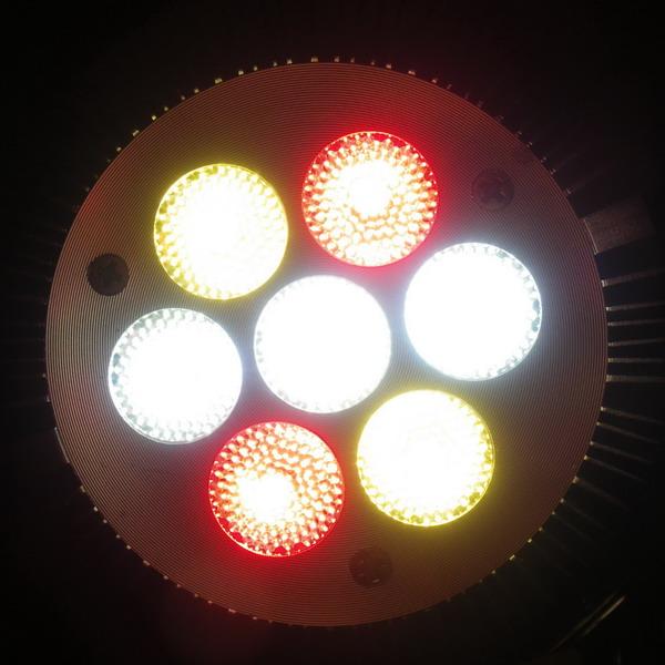 BeeLIGHTのLED電球「BH-0826H2」の特徴的な3色のLED電球面、点灯写真。