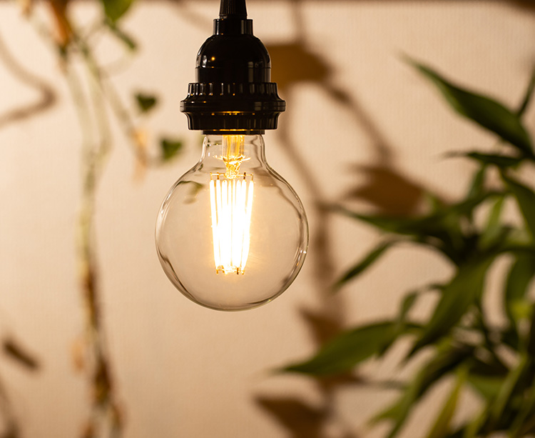 BeeLIGHTのLED電球「BD-0626G80」の商品画像