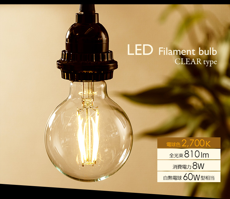 BeeLIGHTのLED電球「BD-0826G80」の商品画像
